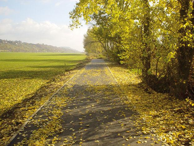 cyklistická stezka Litoměřice–Třeboutice, dokončené dílo